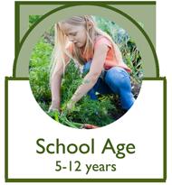 Link to information on School Aged Children