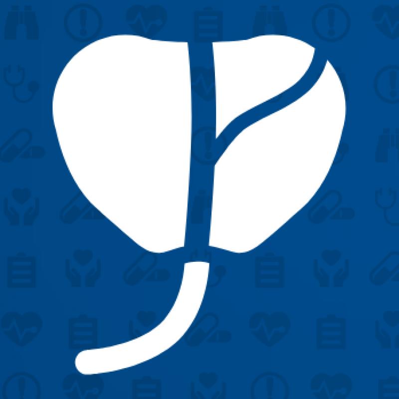 Prostate Icon