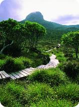 Great bushwalking