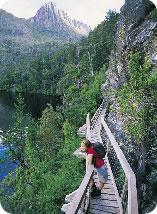 A scenic walk