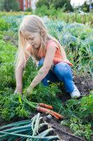 school aged girl gardening